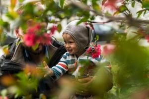 baby boy in flowers
