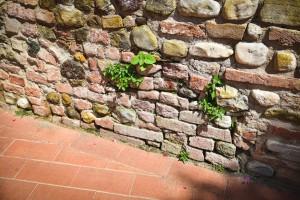 MaMagare-toscana-siena-firenze-pisa-travel-photo_6925