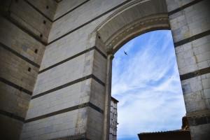 MaMagare-toscana-siena-firenze-pisa-travel-photo_7062